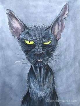 chat noir aux yeux jaunes, superstition