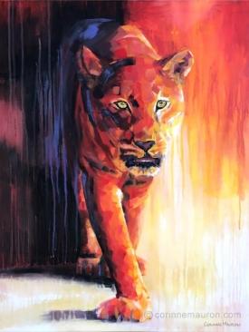 Félin marchant de face, ambiance rouge chaude