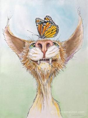 Chat avec papillon sur le museau