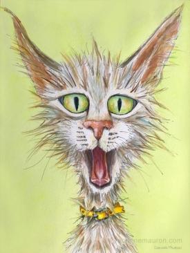 chat gueule ouverte avec collier