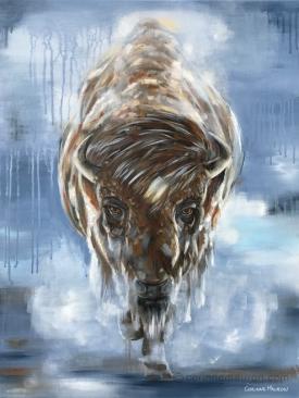 bison, brume d'hiver
