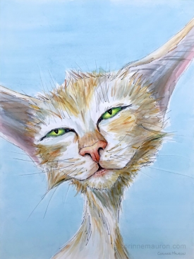 chat yeux mi-clos